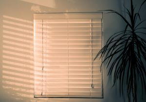 Although Windows Serve Their Purpose On Own There Are A Handful Of Benefits If You Put Blinds Them Window Covering That Offers
